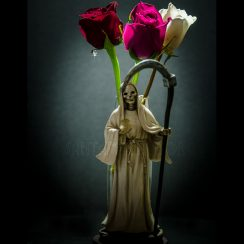 imagenes de la santa muerte con rosas (2)